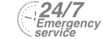 24/7 Emergency Service Pest Control in Clapton, E5. Call Now! 020 8166 9746